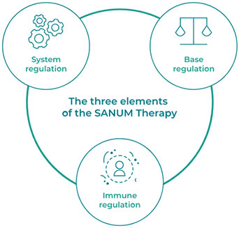 Three Elements of Sanum Therapy